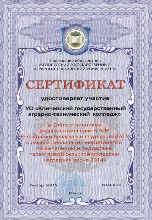 Сертификат слет отличников