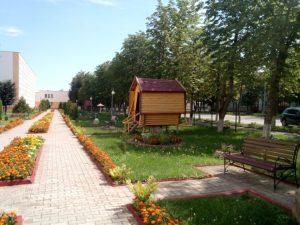 Территория колледжа КГАТК