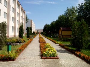 Кличевский колледж территория